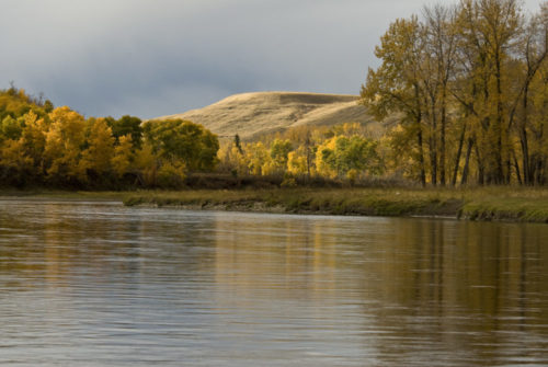 The Bow River – A River Recreation Plan is Needed